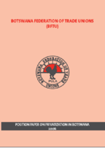 Position paper on privatization in Botswana 2006