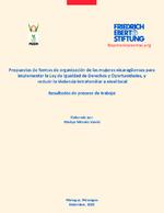 Propuestas de formas de organización de las mujeres nicaragüenses para implementar la Ley de Igualdad de Derechos y Oportunidades, y reducir la violencia intrafamiliar a nivel local
