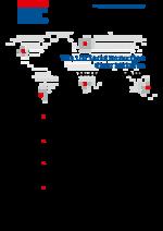 The UN social protection floor initiative