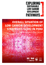 Exploring sustainable low carbon development pathways
