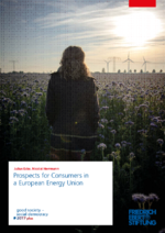 Prospects for consumers in a European Energy Union