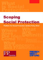 Scoping social protection