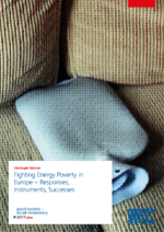 Fighting energy poverty in Europe - Responses, instruments, successes