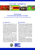 The public sector and the parastatal earnings structure in Zimbabwe