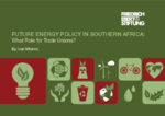 Future energy policy in Southern Africa