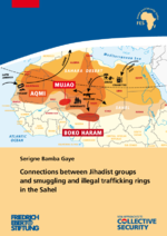 Connections between Jihadist groups and smuggling and illegal trafficking rings in the Sahel