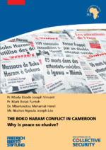 The Boko Haram conflict in Cameroon