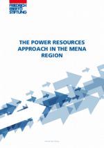 The power resources approach in the MENA region