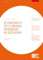 Economics of Corona pandemic in Slovenia
