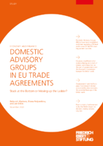 Domestic advisory groups in EU trade agreements