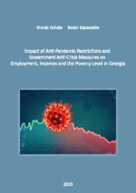 Impact of anti-pandemic restrictions and government anti-crisis measures on employment, incomes and the poverty level in Georgia