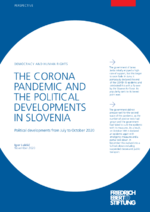The Corona pandemic and the political developments in Slovenia