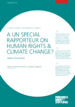 A UN special rapporteur on human rights & climate change?