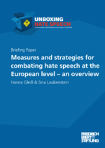 Measures and strategies for combating hate speech at the European level