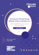 The impact of climate change mitigation policy on employment
