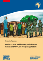 Pandora's box. Burkina Faso, self-defense militias and VDP law in fighting jihadism