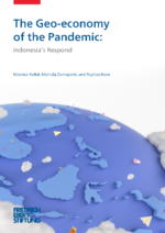 The geo-economy of the pandemic